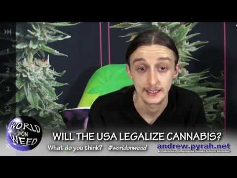 Is 2014 the year for Cannabis Legalization? Legal Marijuana? WORLD ON WEED Cannabis News