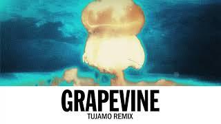 Tiësto Grapevine Tujamo Remix