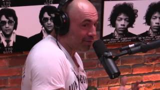Joe Rogan on Michael Bisping vs Anderson Silva outcome   discusses steroids accusations
