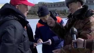 рыбаки прогнали толстого морского котика