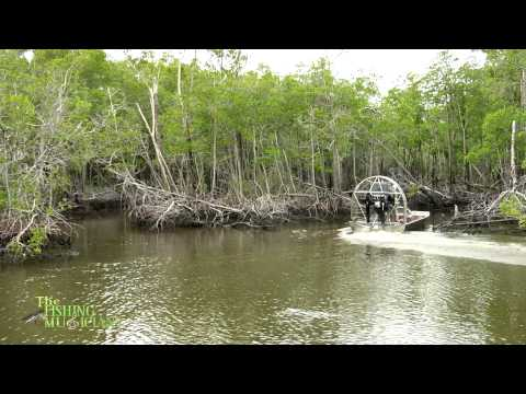 Florida, Everglades Offshore fishing with capt Charles Wright of Chokoloskee Charters