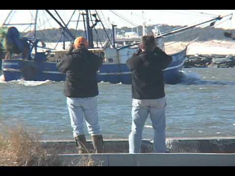 Wilds of Worcester - #9 - Ocean City Inlet Birding