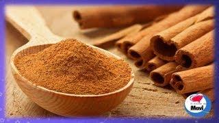 Beneficios y propiedades de la canela - ¿Para que sirve la canela? - Planta medicinal