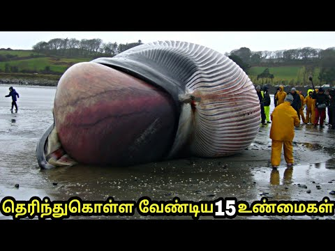 ???? ???????? ????????????? ??????? 15 ???????? | 15 unbelievable facts in the world |Tamil | part 1