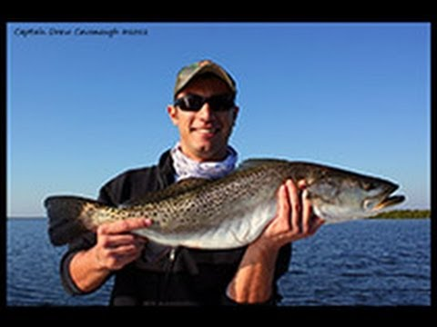 Mosquito Lagoon Fishing Report December 15th, 2012