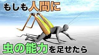 【理科】もしも人間に虫の能力が備わったら?【物理エンジン】