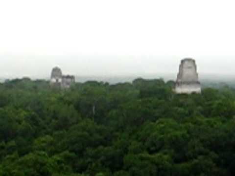 el Tikal Guatemala View From Templo iv Tikal el