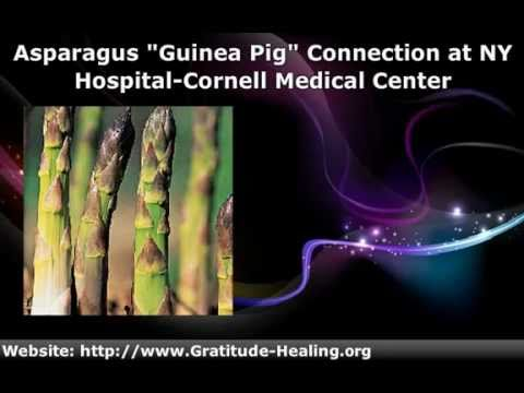 Asparagus and Cancer: Is It a Natural Cure?