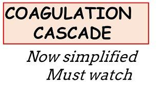 Coagulation cascade now simplified