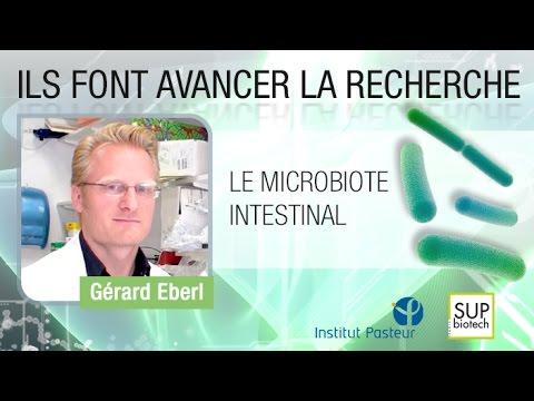 Gérard Eberl - Le microbiote intestinal (Intestinal microbiota)