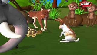 Download Moral Stories in Hindi For Children | हिंदी नैतिक कहानियाँ | Hindi Animal Stories Collection Kids 3Gp Mp4