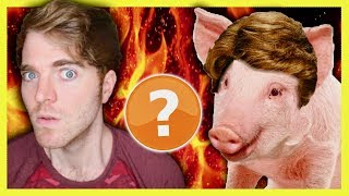 Download Lagu SHANE DAWSON IS A PIG? - CONSPIRACY THEORY Gratis STAFABAND