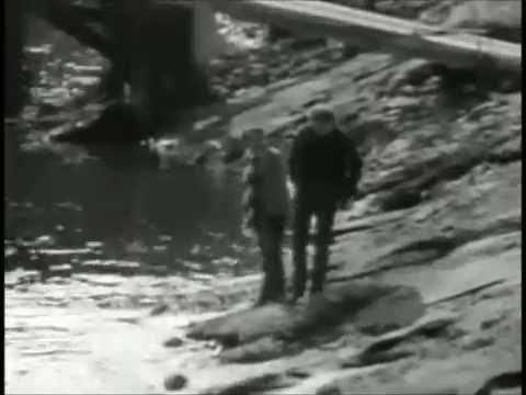 Simon & Garfunkel - I Am A Rock - 1966