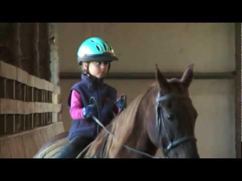 Cash Lovell Stables Fall Festival 2011 - Winston-Salem Horse Riding lessons