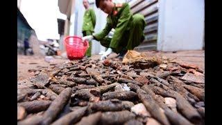 """Hiện trường kinh hoàng vụ nổ trút """"mưa"""" vỏ đạn ở Bắc Ninh"""