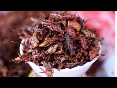 Eating Oaxacan Grasshoppers Mexican Food Guelaguetza restaurant Los Angeles | The Food Culture