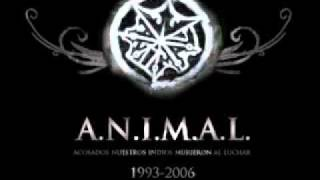 Watch Animal Antes De Morir video