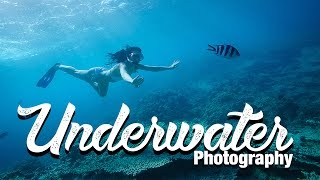 Underwater Photography Guide Equipment and Tipps - Benjamin Jaworskyj learn Photograper