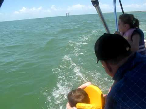 Hannah video:  Dolphin boat in Corpus Christi, TX  2010 07