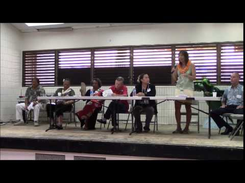 State House District 4 Puna Pono Alliance candidate forum