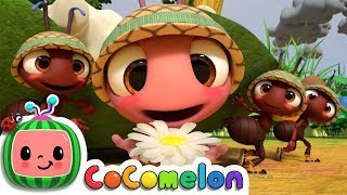 The Ants Go Marching   CoCoMelon Nursery Rhymes & Kids Songs