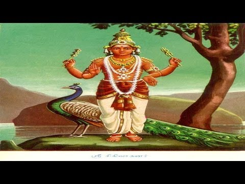 Pachai Mayil By Veeramanidassan video