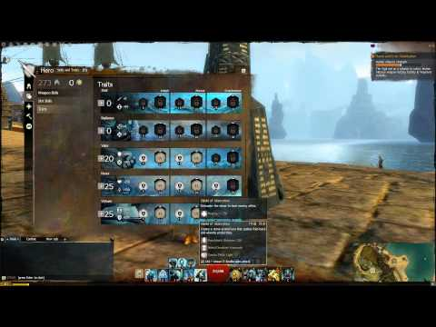 Guild Wars 2 25k HP Dungeon Tank Guardian Build