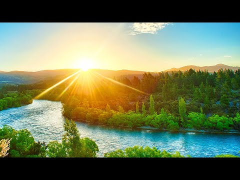 Relaxing Music for Stress Relief. Calm Music for Meditation, Healing Therapy, Sleep, Spa, Yoga