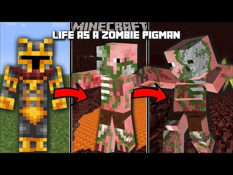 Minecraft LIFE AS A ZOMBIE PIGMAN MOD / SURVIVE IN THE NETHER AND THE END!! Minecraft