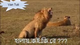 বাংলা ফান  Bangla Fun