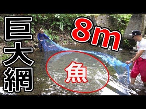 8mの巨大網 追い込み漁で大量捕獲!!!