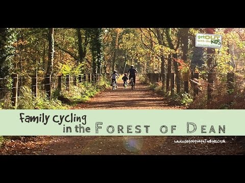 Forest of Dean Family Cycling