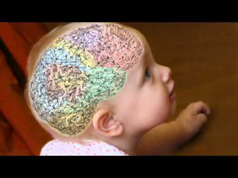 How to Make Your Brain Grow