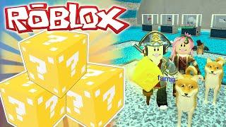Roblox ITA - La Follia Delle Lucky Block!  - #15 - Lucky Block Tycoon