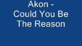 Watch Akon Could You Be The Reason video