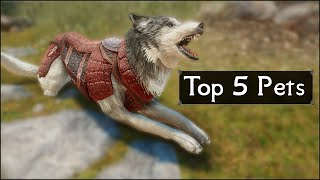 Skyrim: Top 5 Pets and Furry Friends You May Have Missed in The Elder Scrolls 5: Skyrim