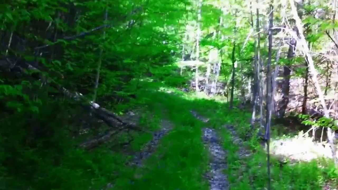 North fork tye river nelson va log cabin project youtube for Tye river cabin co