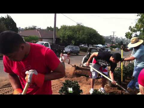 Embrace - AHF Mission Support Video 2014