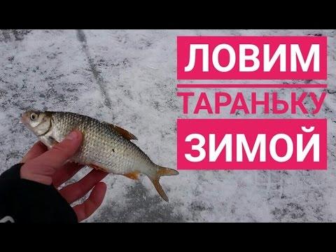 рыбалка на днепре в светловодске