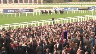 Frankel better than Black Cavier ? (All truth in this video)