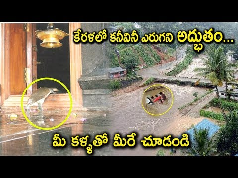 Tortoise Saves KERALA People in Rains | Miracles in KERALA Rains | Tollywood Nagar