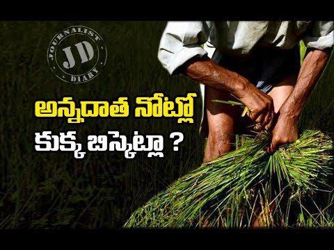 Crop Loans, Farmer Loan Waive, Madhyapradesh Farmer Protest, Mandasour Police Firing, Farmer Loan un UP and Maharastra, Farmer Suicides, Drought in India, రైతు ఆత్మహత్యలు, రైతు రుణ మాఫీ, మధ్యప్రదేశ్ రైతుల నిరసన,
