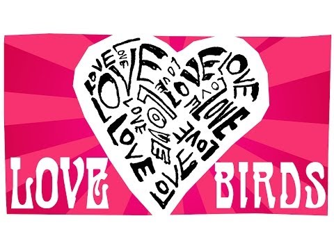 Love Birds - Happy Valentine's Day!