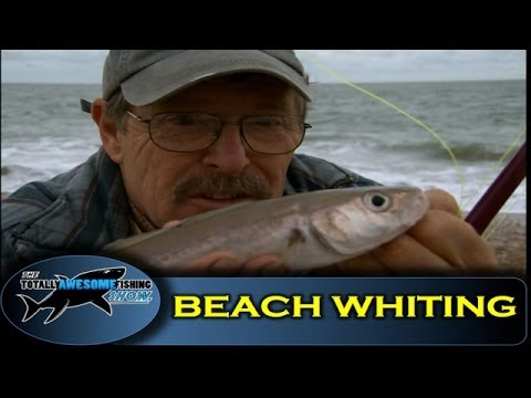 Beach fishing for Whiting- Series 1- Episode 8 - Totally Awesome Fishing