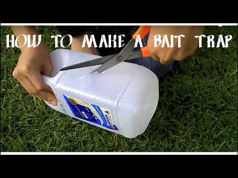 how to make a poddy mullet trap