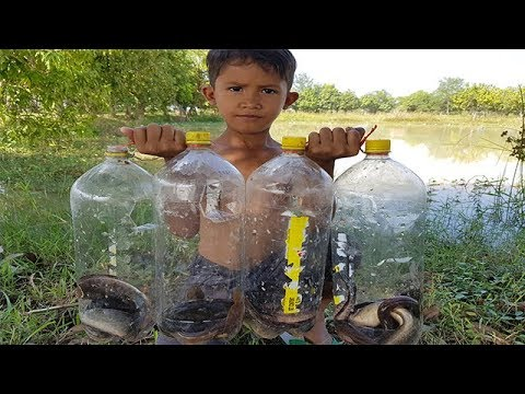 Amazing Deep Hole Fish Trap -How To Make Deep Hole Fish Trap With Coca Plastic Bottle