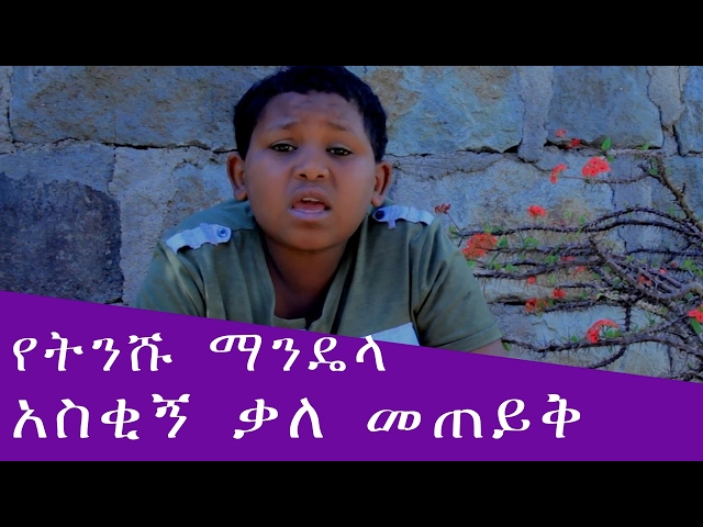 ETHIOPIA - Funny Interview with Little Mandela