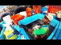 Increíbles Hechos de PESCA [video]