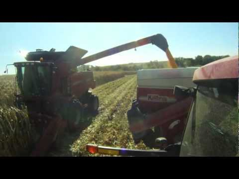 Corn Harvest 2012 with Case Ih 6088, Magnum 215 & Killbros 1820 grain cart