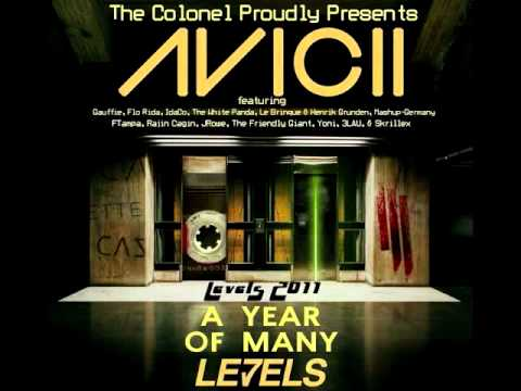 Levels 2011 - A Year of Many Levels (Mashup Compilation)